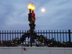 Newport Lights 16