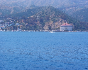 Catalina-Coming to Harbor 4