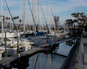 DP-Boats 2