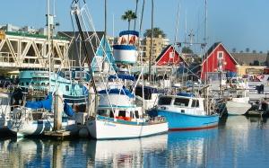 Oceanside harbor fishing