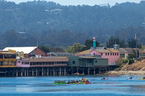 Monterey Kayakers