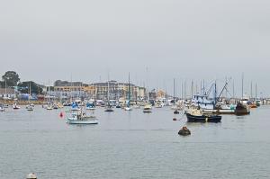 Monterey looking north