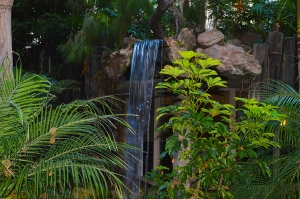 NC Village water fall