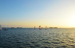 Veterans pier regatta