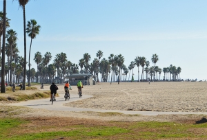 VB--Bicycles on sidewalk