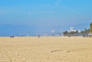 VB-Santa Monica pier in the background
