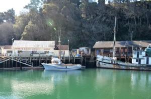 FB- Noyo Harbor green water