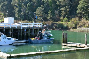 FB-Noyo Harbor lone boat