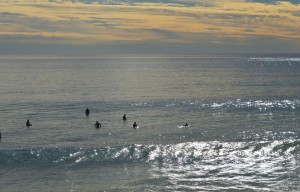 Malibu surfers in water