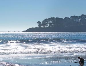 Cambria coast near pier