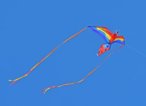Redondo--Lone Kite in air