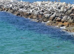Redondo--Pretty water