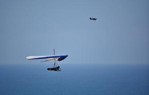 LJ Hang glider