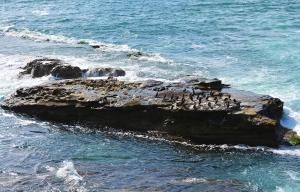 LJ Rock formation