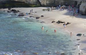 LJ Swimming beach