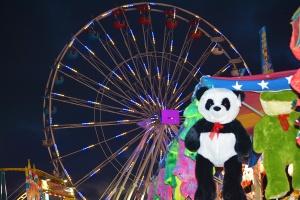 Ferris Wheel WP
