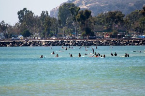 Doheny surfing in the distance