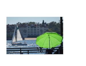 Collage umbrella 800