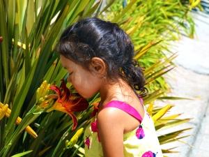 Alina flower 800