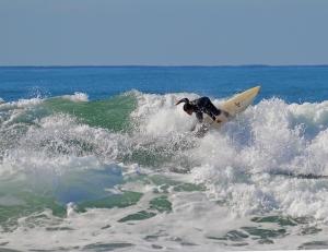 Arlo Surfing 800