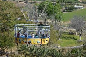 The balloon cage