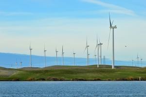 delta-windmilss