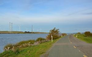 lone-road