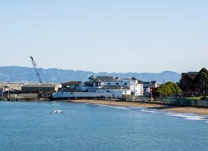 san-fran-bay-beach